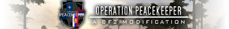 Operation Peacekeeper: Hotfix 0.31 eingetroffen